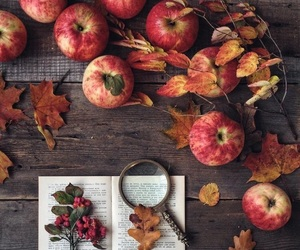 autumn, apple, and fall image