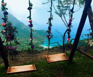 flowers, nature, and swing image