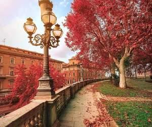 europe, travel, and autumn image