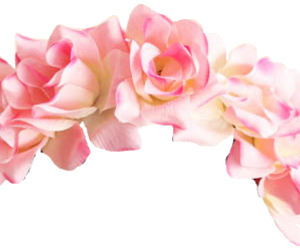 flower, pink, and png image