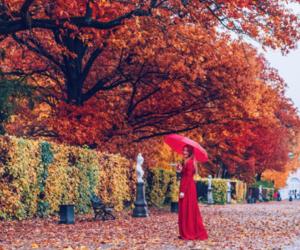 autumn, umbrella, and woman image
