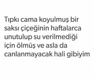 türkçe sözler and tumblr sözleri image