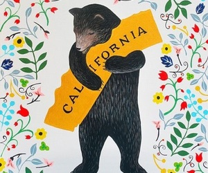 black bear, cali, and california image