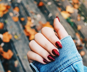 autumn, leaves, and tumblr image