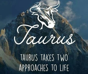 art, quotes, and taurus image