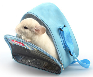 blue, Chinchilla, and travel bag image