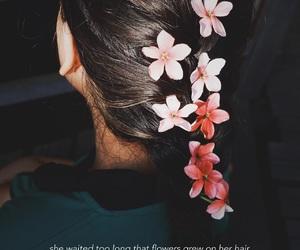 flower, hairflower, and sunshine image