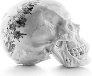 skull, flowers, and white image