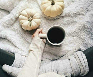 coffee and pumpkin image