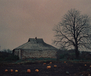 cottage, countryside, and dark image