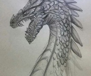 black and white, dragons, and draw image