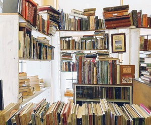 books, library, and bookworm image