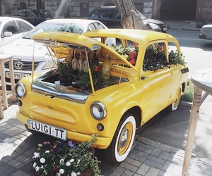 car, flower, and fun image
