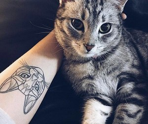 beautiful, cat, and tattoo image