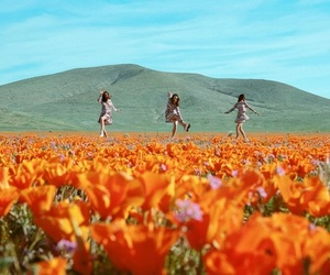 girls, flowers, and nature image