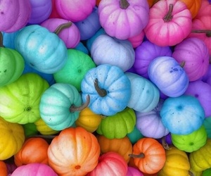 pumpkin, colorful, and colors image