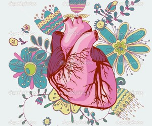 heart, anatomy, and flowers image