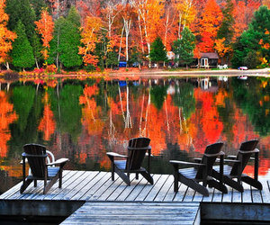 autumn, country living, and lake image