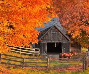 autumn, barn, and farm image