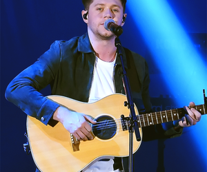 flicker and niall horan image