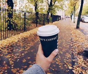 autumn, fashion, and coat image