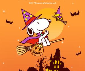 beagle, costumes, and dog image
