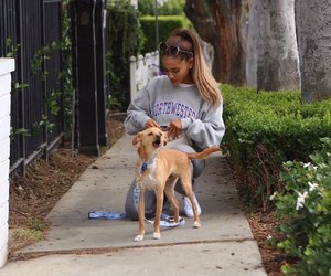 candid, Toulouse, and ariana grande image
