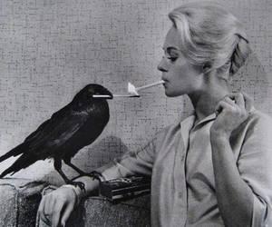 cigarette, black and white, and smoke image