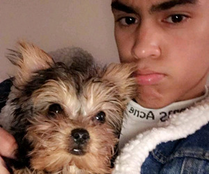 edwin honoret, edwin, and honoret image