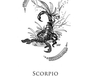 scorpio, zodiac, and astrology image