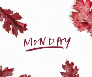 autumn, monday, and october image