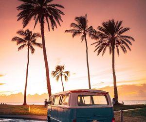 sunset, palmtrees, and hawaii image