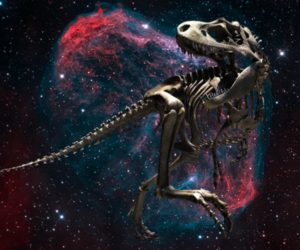 dinosaur, skeleton, and space image