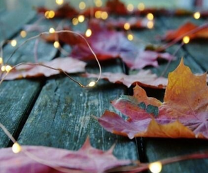colours, inspiration, and autumn image