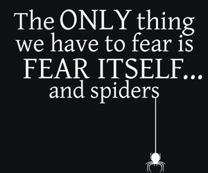 fear and spider image