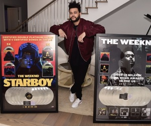 starboy, the weeknd, and xo image