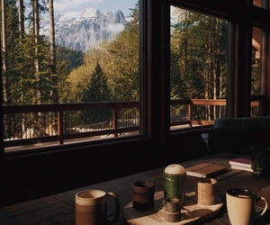 nature, autumn, and coffee image