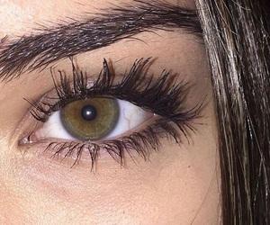 eye, eyebrows, and eyelashes image