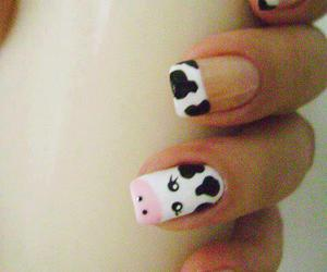 nails, cow, and unhas image