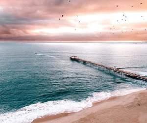 beach, birds, and pastel image