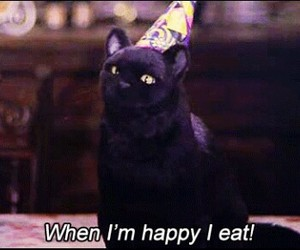 salem, cat, and eat image
