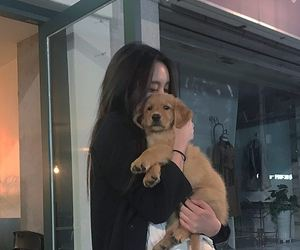 ulzzang and dog image