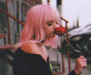 aesthetic, rose, and short hair image