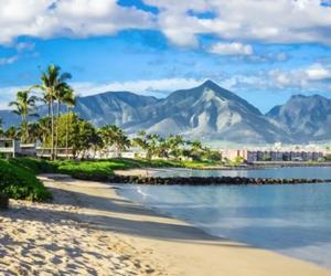 beaches, maui, and paradise image