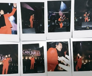 Harry Styles, polaroid, and one direction image