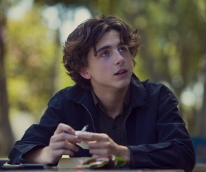 timothee chalamet, boy, and lady bird image