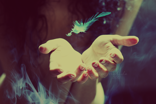 feather, hands, and blue image