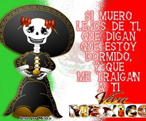day of the dead, dia de muertos, and méxico image