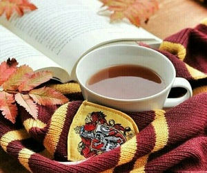 book, autumn, and harry potter image