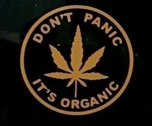 marijuana, weed, and organic image